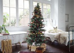 スタジオ クリスマスツリー