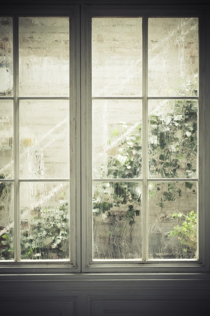 window_and_green