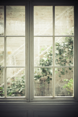 window_and_green_top