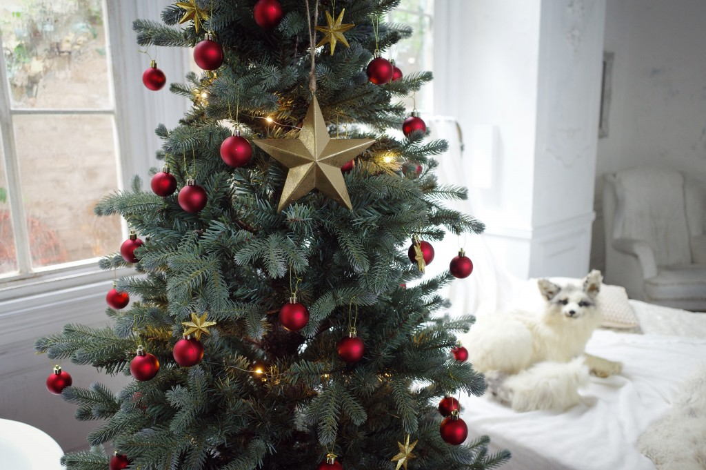 ハウススタジオ クリスマスツリー