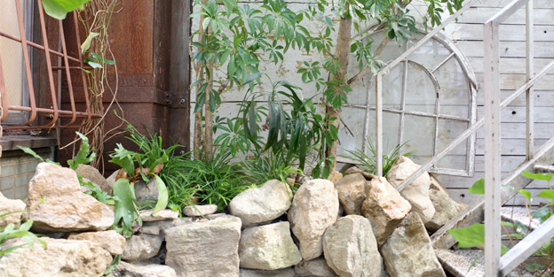 スタジオ 庭 植物 ブツ撮り